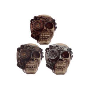 Steampunk Skulls
